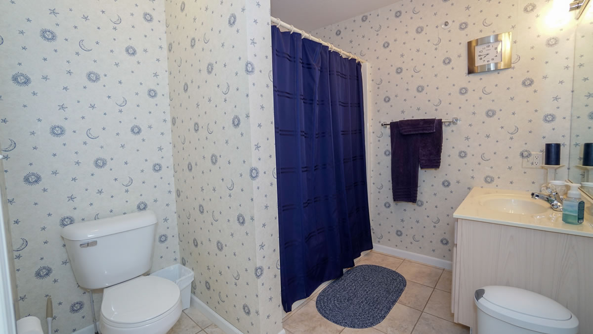 Lake Ozark, MO Guest Bathroom #2